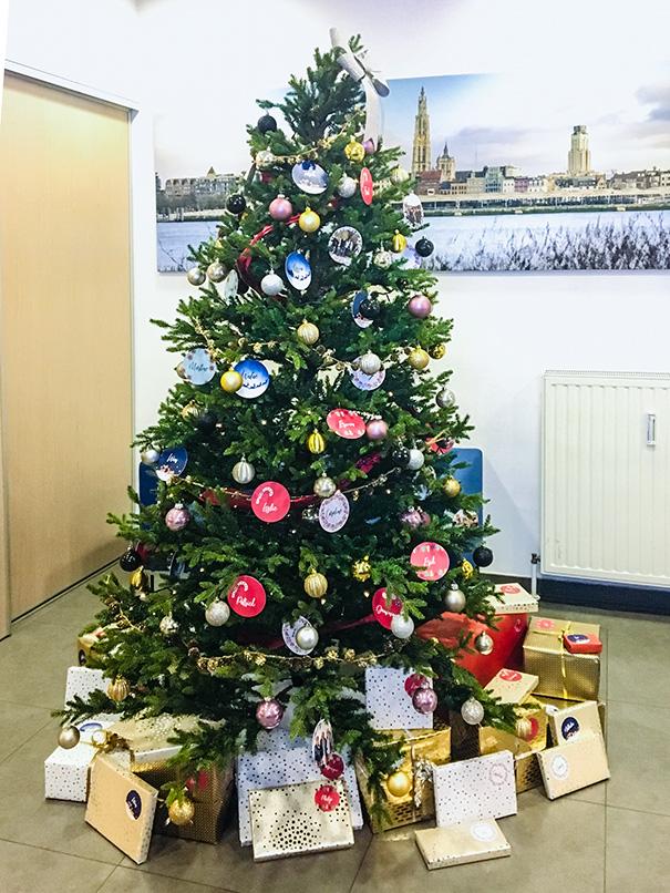 beheer-kerstboom-1