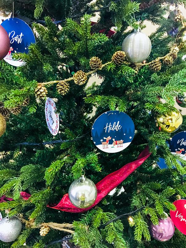beheer-kerstboom-2